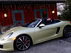 2014 Boxster S.  Goldie with her Santa hat.