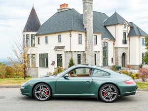 RIBBIT! Malachite Green 2008 Carrera 4S