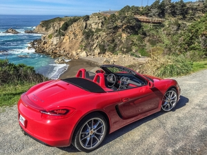 Carmine Red 2016 981 Sonoma Coast