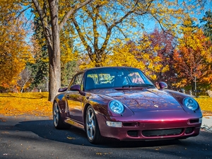 The Porsche Colors of Fall